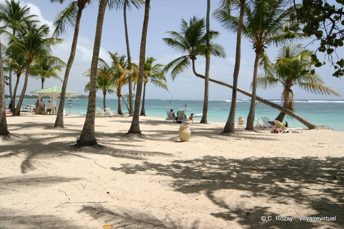 Under the coconut trees the caravelle beach sainte anne guadeloupe - Sainte anne guadeloupe office du tourisme ...