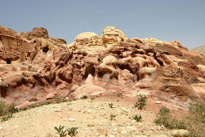 petra-wadi-el-metaha_242