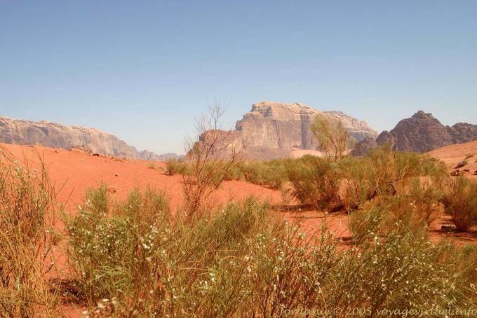 Wadi Rum 494