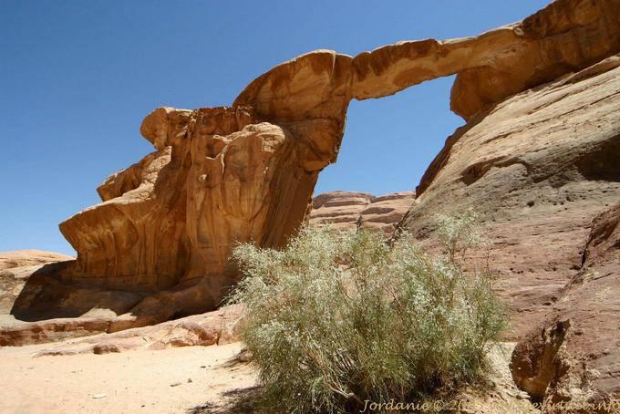 Wadi Rum 559