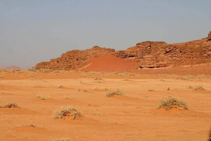 Wadi Rum 712