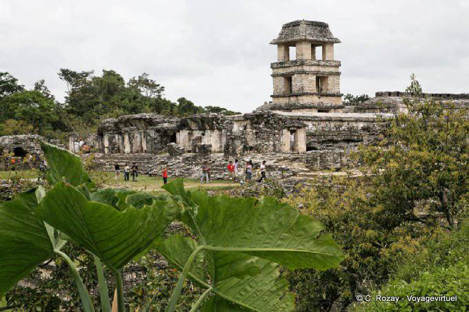 La Palacio de Palenque, El Palacio 34