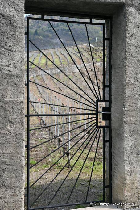 Wrought Iron Door Eagle Switzerland