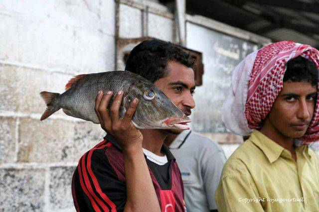 Tihama Al Hodeidah 3297
