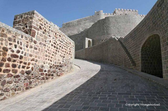 Taez Citadelle 2945
