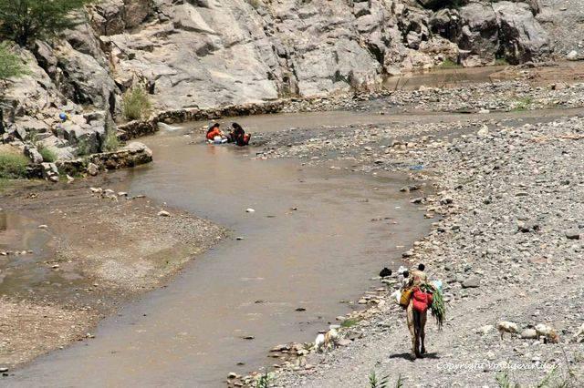 Wadi Serdoud 1468